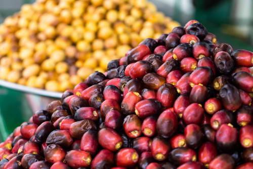 Dates have been one of the most important crops in the Middle East for thousands of years.