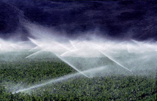 Growth in agricultural production has come at the cost of considerable groundwater depletion.