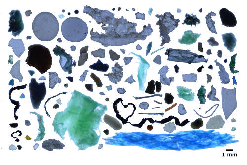 A collage of degraded small plastics found in the Arctic.