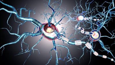 New hope for ALS - Research Highlights - Nature Middle East