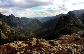 The Haggeher, Socotra's granite mountain range, is an ancient insular hotspot of biodiversity.