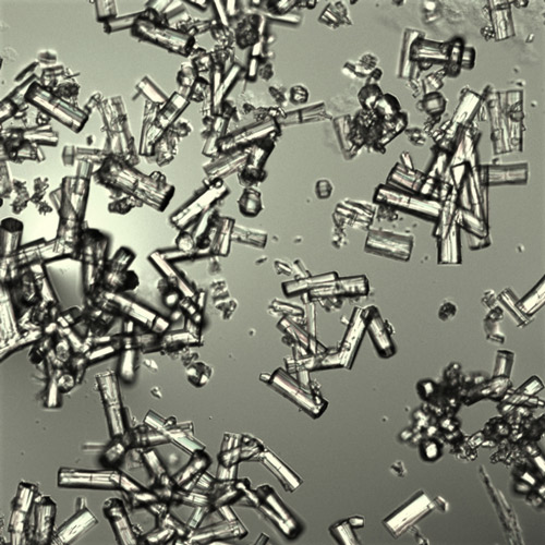 Optical microscope images of aluminum-based metal-organic framework (MOF)-303 crystals.