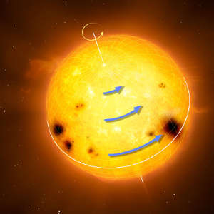 Sun-like stars rotate differentially, with the equator rotating faster than the higher latitudes.