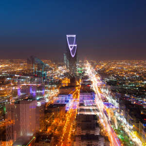 The glow from artificial lighting in urban centres is now reaching many of the world's Key Biodiversity Areas, including many in the Middle East, with serious implications for wildlife and plants.