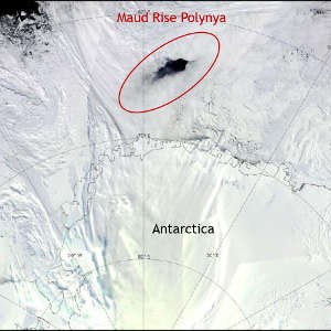 Maud Rise Polynya as seen from space.