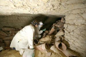 Researchers selecting ibis samples suitable for ancient DNA studies at Saqqara.