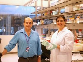 Kourosh Salehi-Ashtiani and Tayebeh Bahmani, a member of his lab, are currently isolating new strains of algae from local environments.