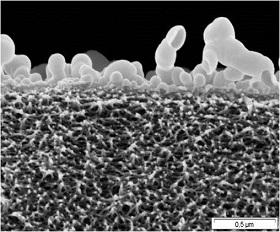 The nanofiltration membranes have pores with a diameter  less than 1/300 of a human hair.