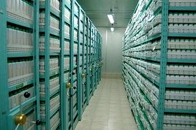 ICARDA's gene bank holds over 110,000 accessions of its mandate crops.