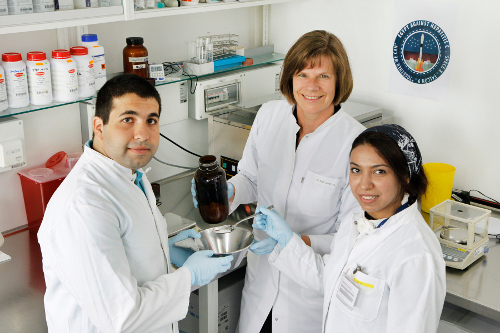 Researchers Akram Abdellatif, Ulrike Protzer and Hanaa Gaber