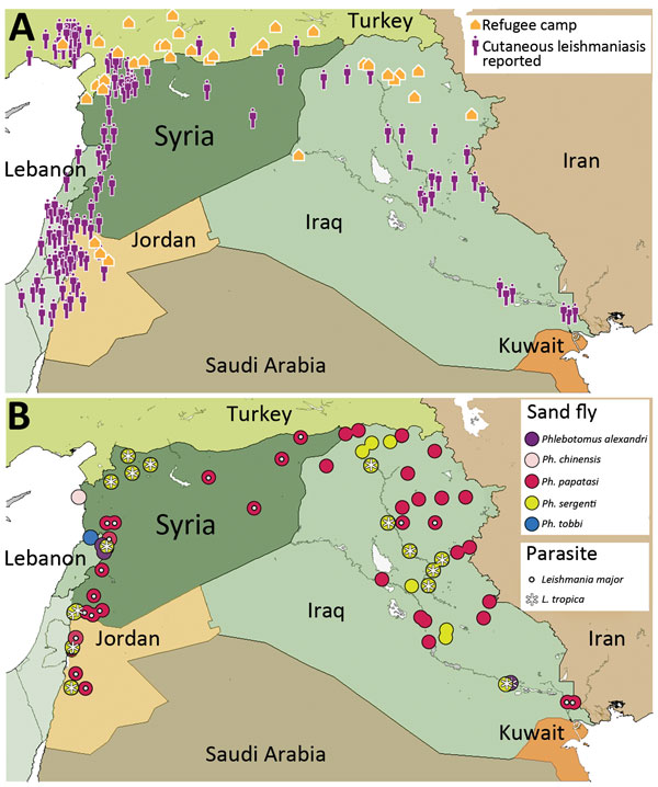 A map showing disease and sand fly distribution and refugee population in and around Syria.